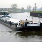 Danube Lion MS