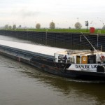 Danube Lion MS